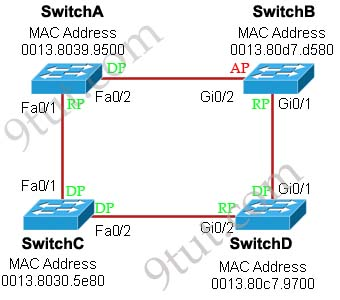 RSPT_port_roles.jpg