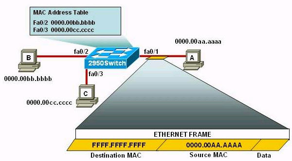 CCNA Training » CCNA – Switch Questions