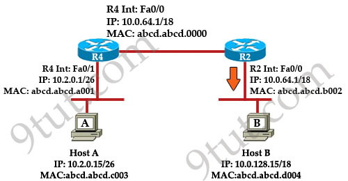 ip packets: