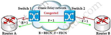 BECN_FECN_2.jpg